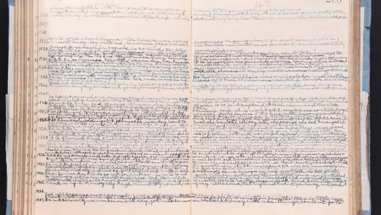 Kathleen Lynn's Diary
